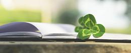 2021MPAcc专业目录白色柱:南京农业大学2021年MPAcc硕士研究生招生专业目录